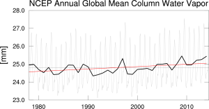 Globally averaged TPW (i.e. CWV)